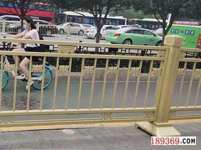 郑州道路护栏生产厂家
